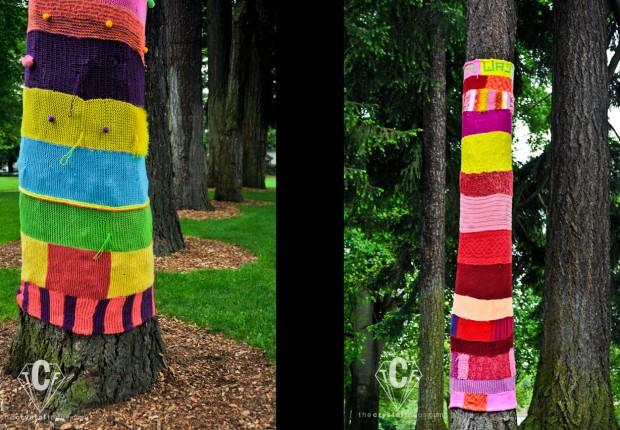 TCF_SFS_060312_treesocks2-3