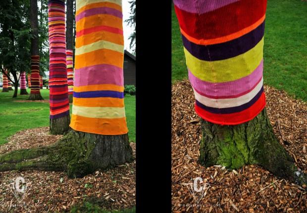 TCF_SFS_060312_treesocks5-6