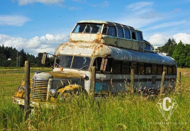TCF_SFS_070112_oregon_roadside_relics2