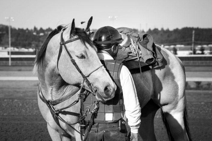 horse, horse races, jockey