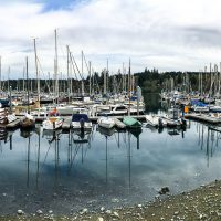 Harbour Marina