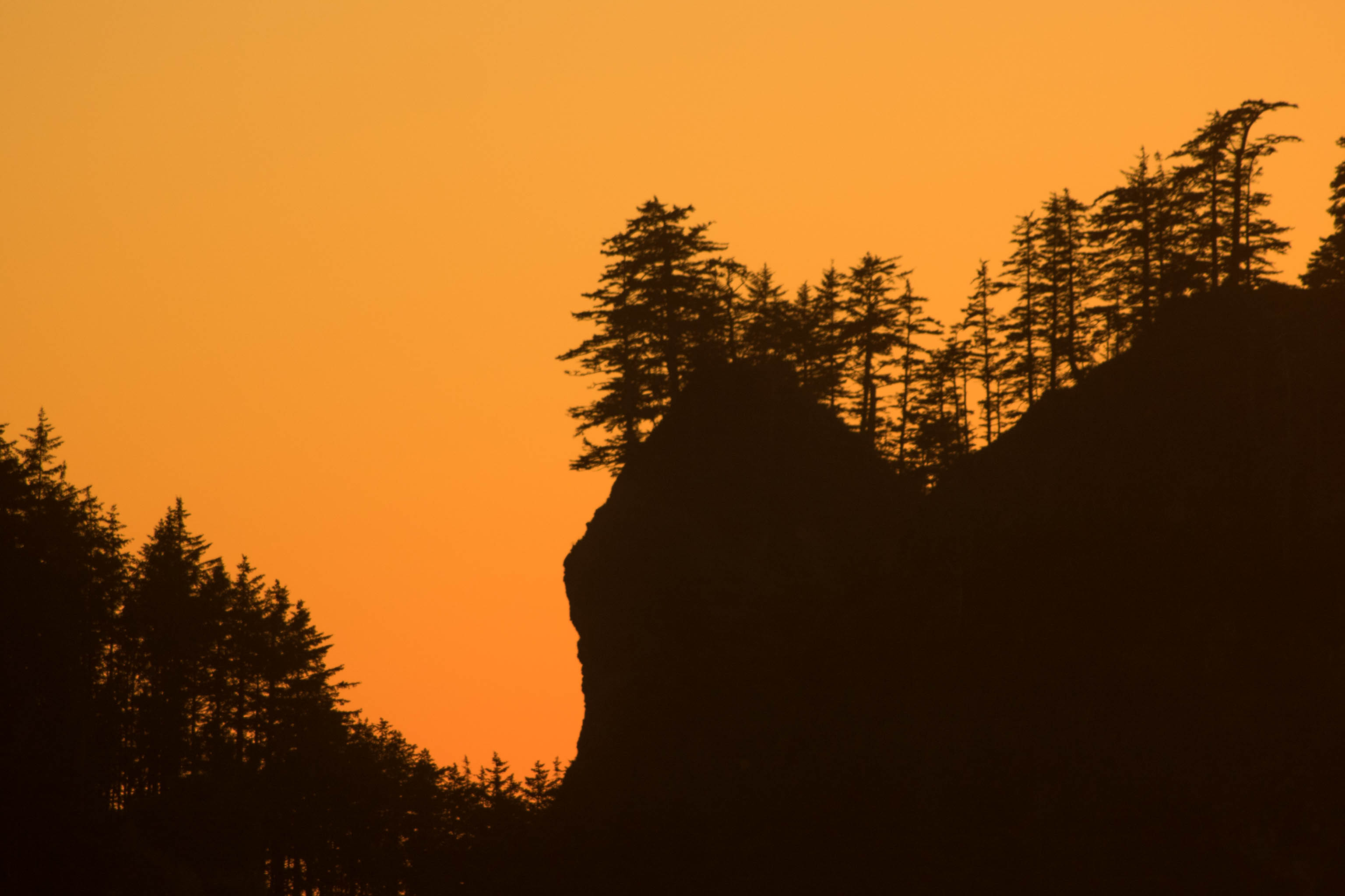 Washington Coast, coast, la push, ocean, pacific northwest, quileute indian reservation, washington state