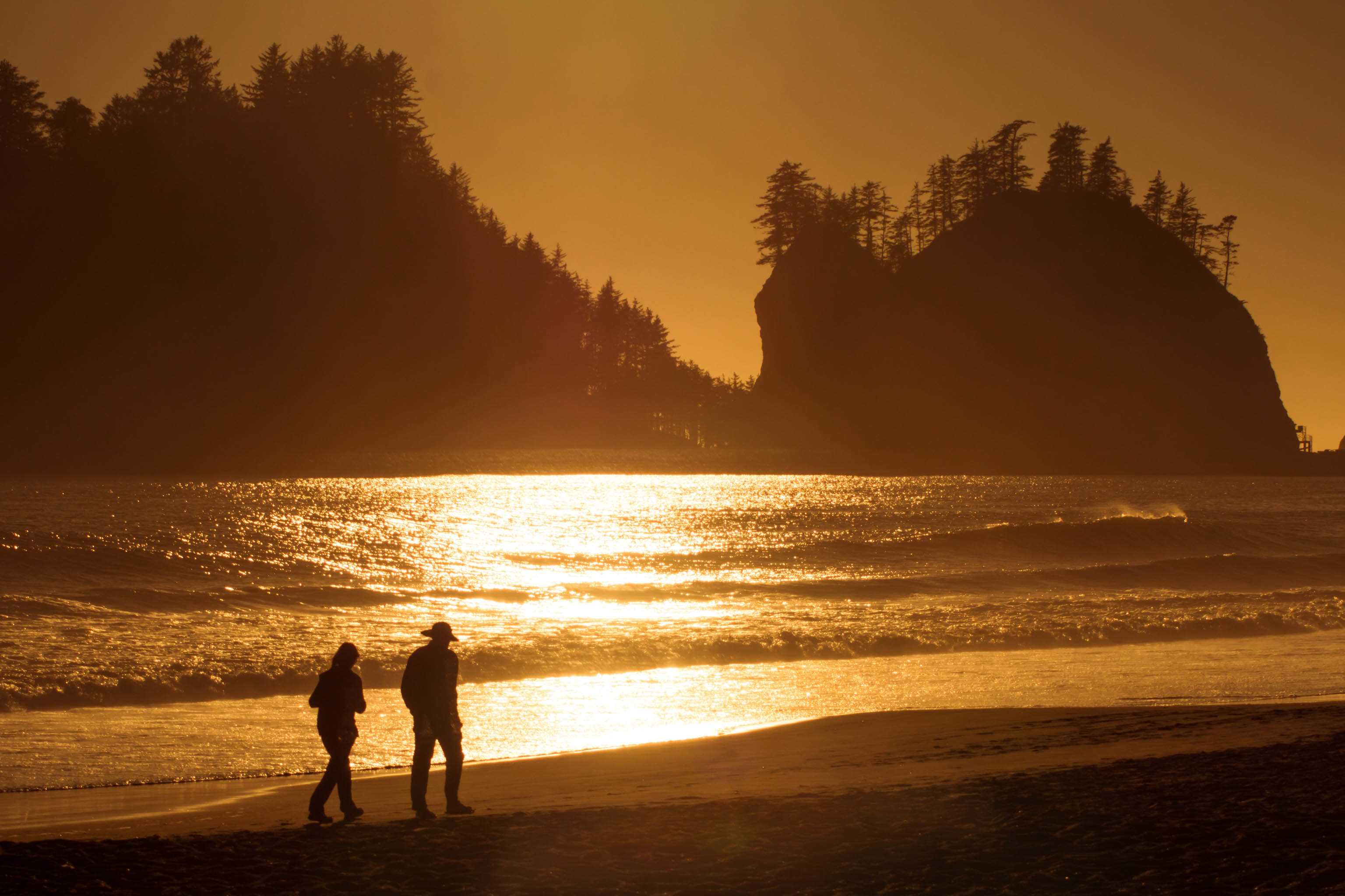 Washington Coast, coast, first beach, la push, ocean, quileute indian reservation, rialto beach