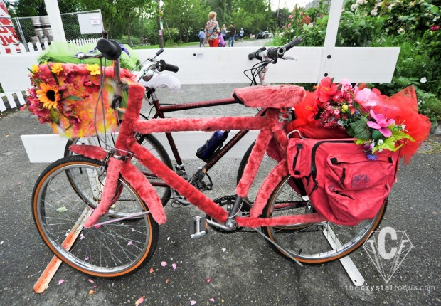 Pink Panther Flower Bike