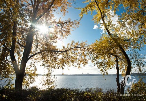 TCF_SFS_111112_Colorful_Autumn_7