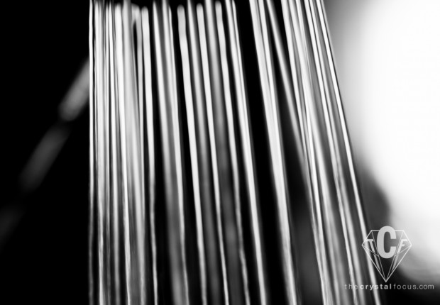TCF_SFS_111812_Black_White_Abstract_2