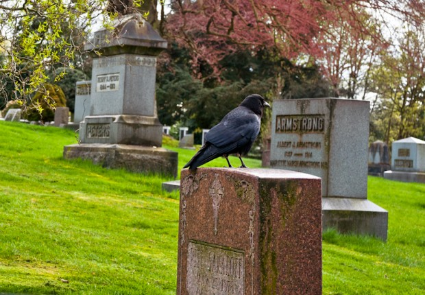 TCF_SFS_041413_01_Lake_View_Cemetery_Seattle