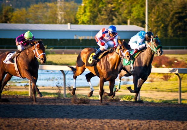 Whistle Cat_Rocco Bowen_Emerald Downs_Live Racing_Washington