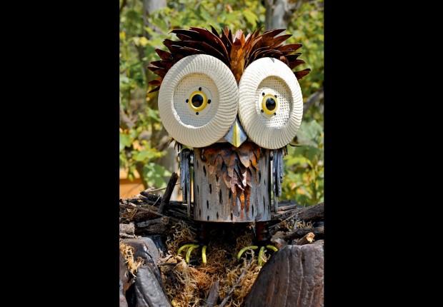 Tyto corbis_Wicker Owl