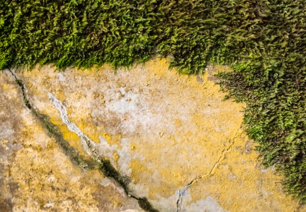TCF_SFS_061514_Touch_of_Texture-4