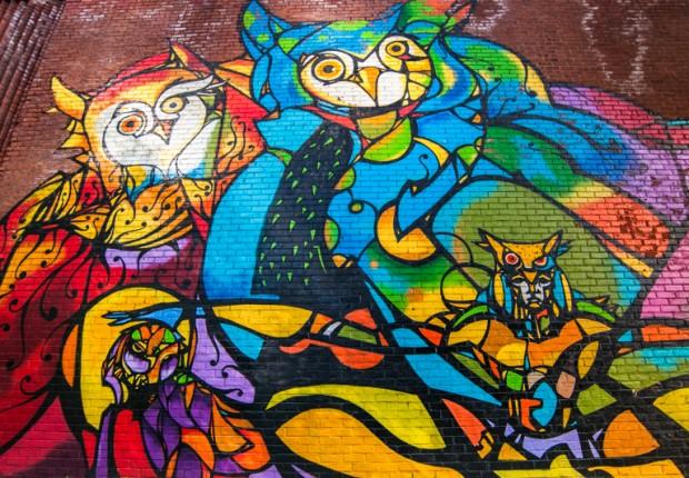 Owl Mural