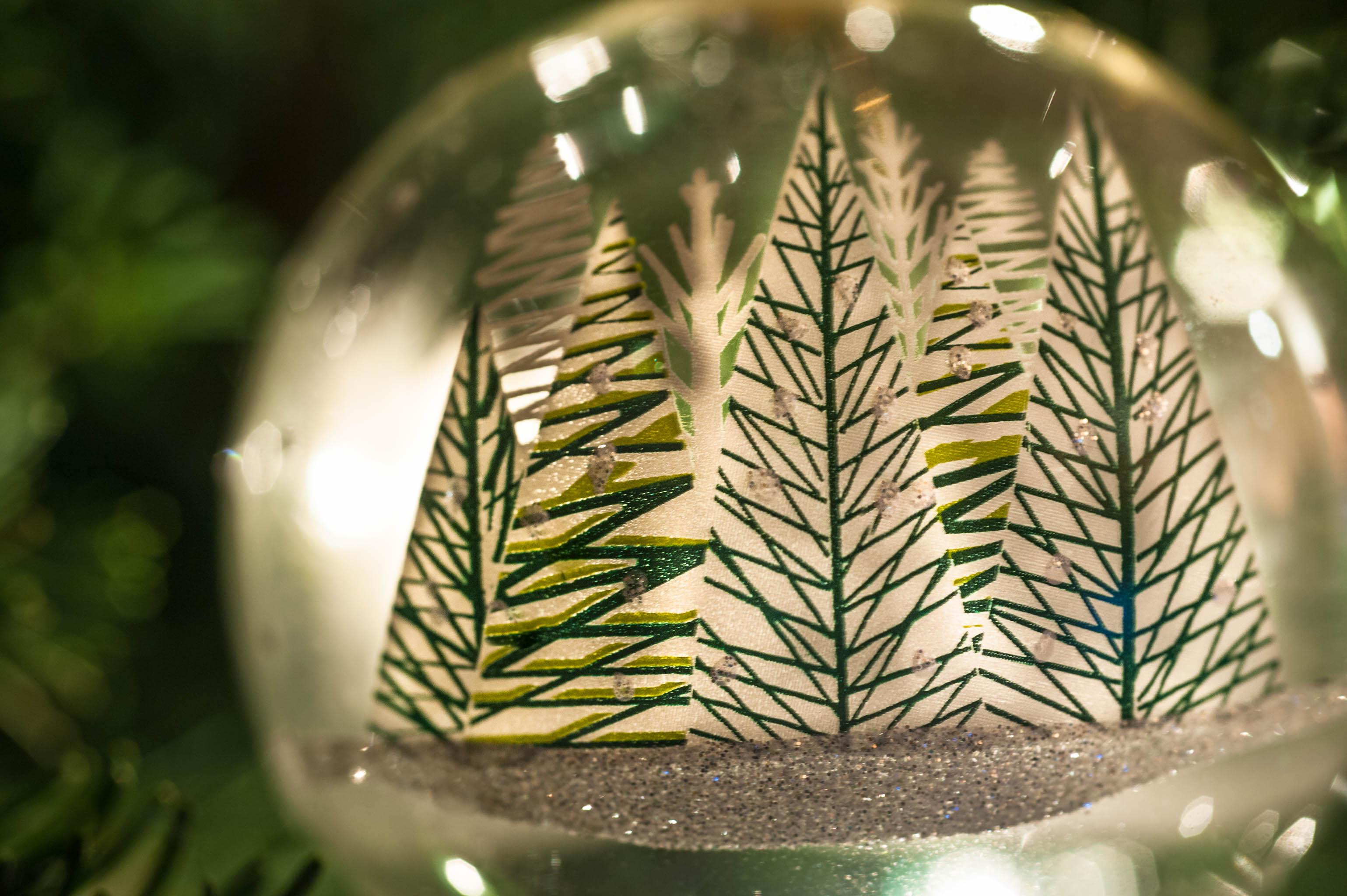 TCF_SFS_122114_Christmas_Cheer-5