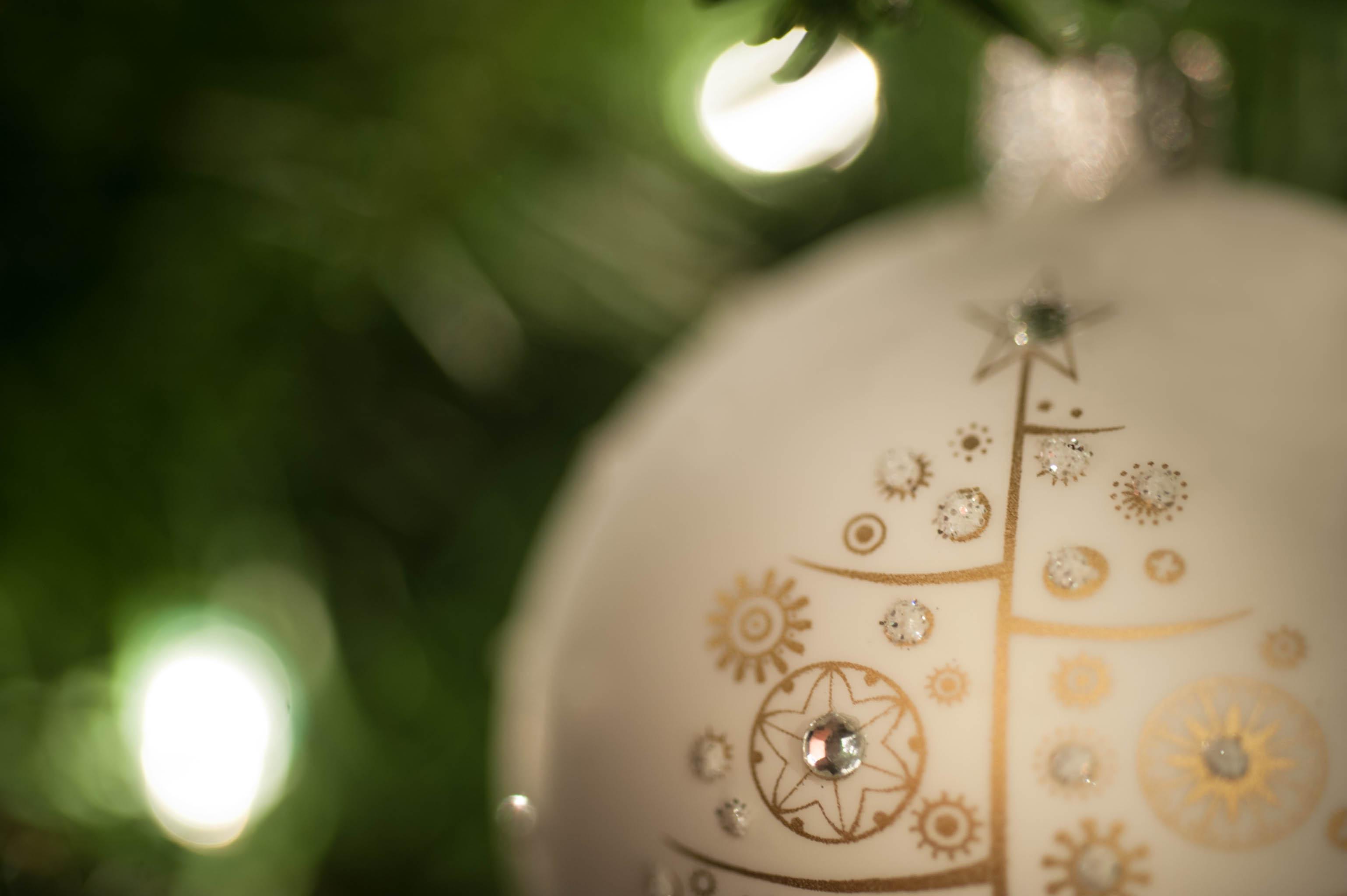 TCF_SFS_122114_Christmas_Cheer-7