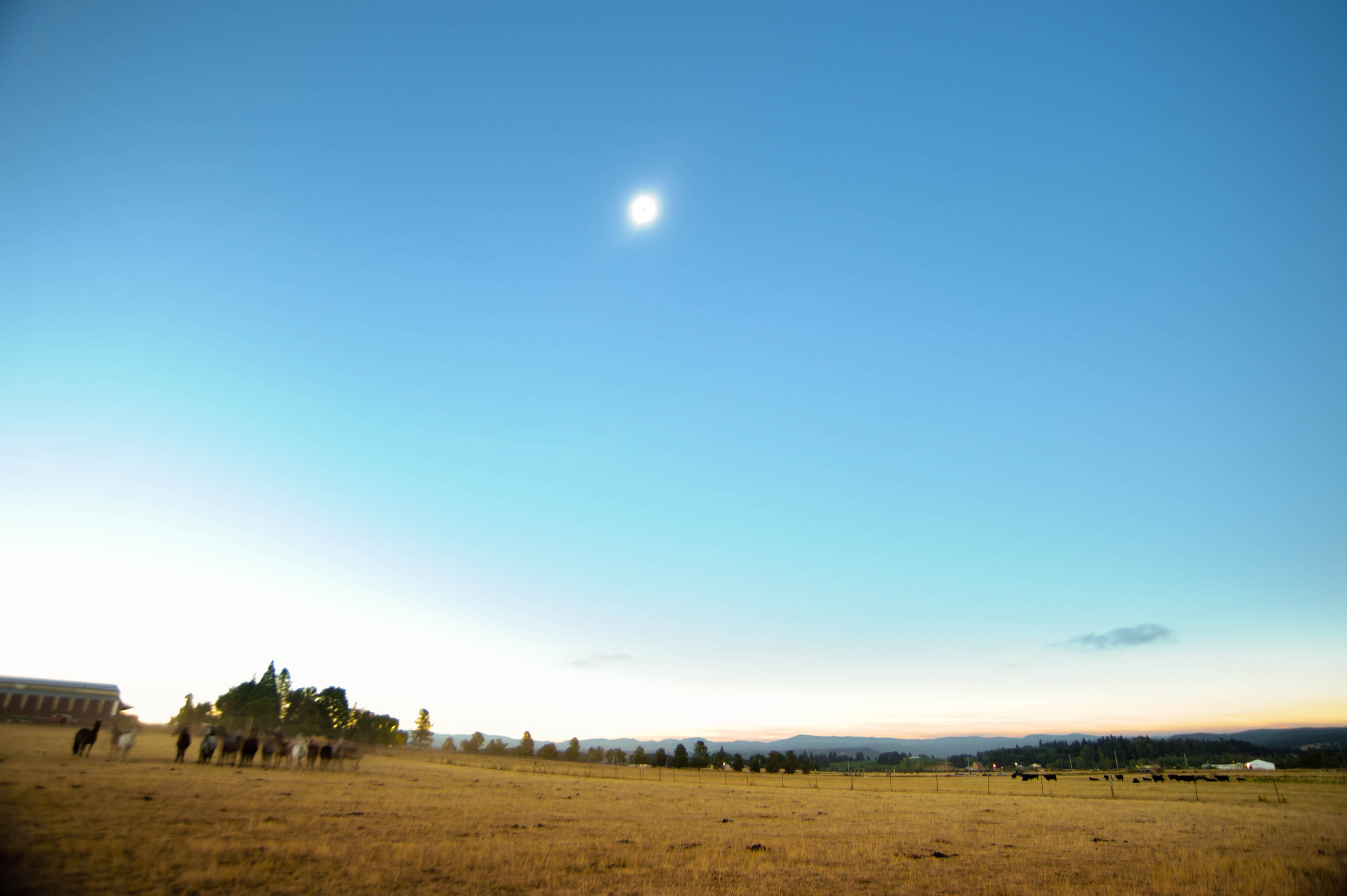 Oregon, eclipse, nature, pacific northwest, sun