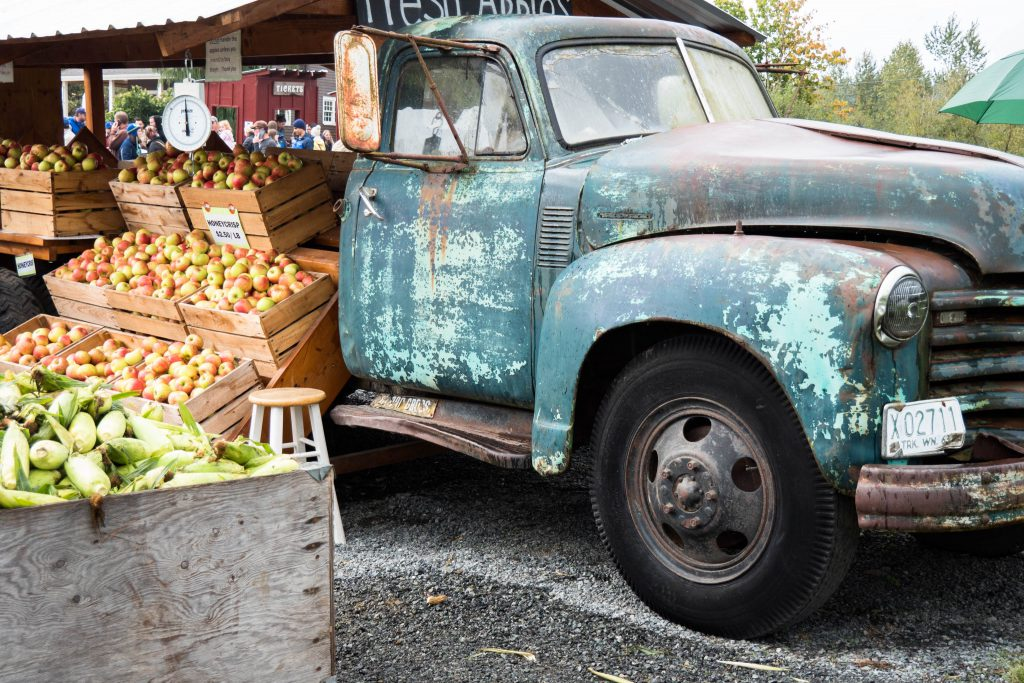 apples, barn, corn, pacific northwest, pumpkin, pumpkin patch, pumpkins, truck, washington state