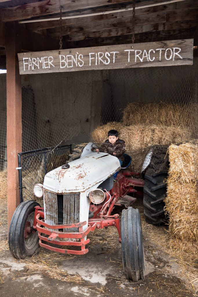 barn, boy, child, pacific northwest, tractor, washington state