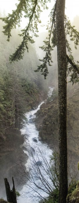 landscape, nature, nooksack Falls, pacific northwest, river, tree, water, waterfall