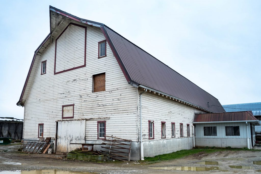 La Conner, Washington, barn, barns, conway, gambrel barn, old barn, rustic, skagit, white barn