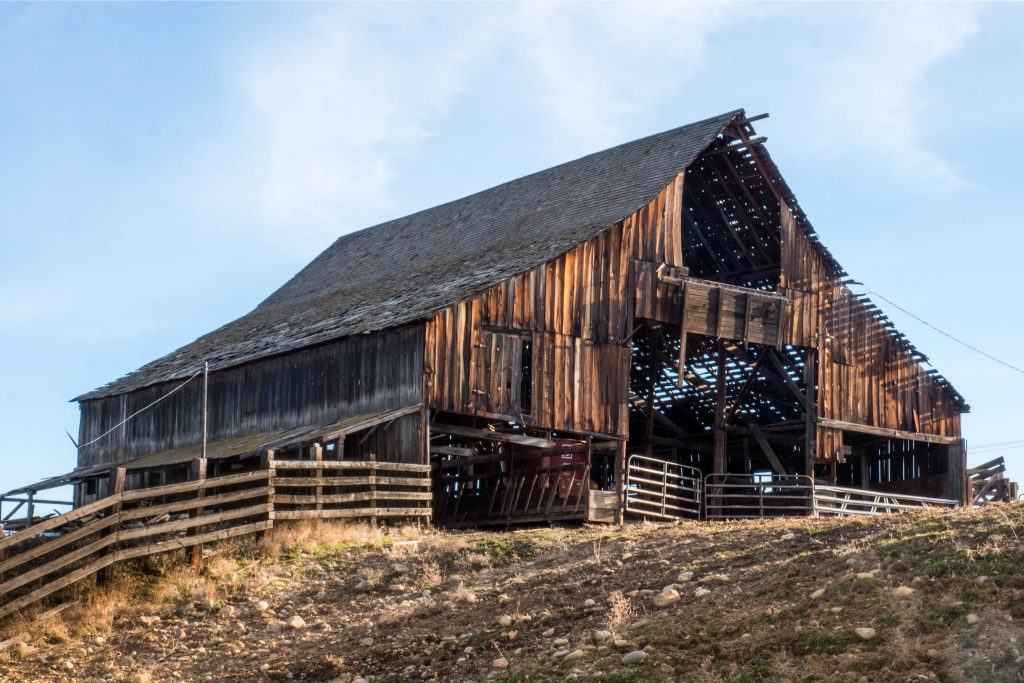 Washington, barn, barns, conway old barn, corral, eastern washington, rustic, thorp, wooden barn