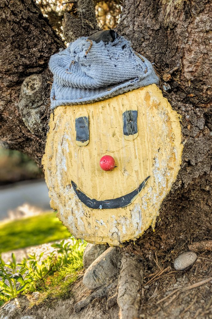 face on wood, happy tree, smile, smiley face, tree trunk