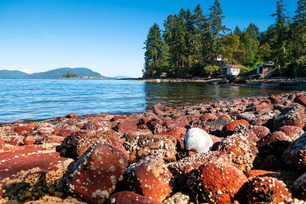 BC, bricky bay, british columbia, island, pender island