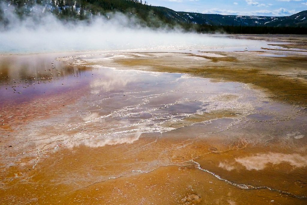geyser, grand pristmatic springs, hot springs, yellowstone, yellowstone national park
